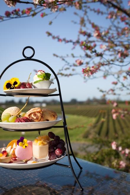 zealong tea garden