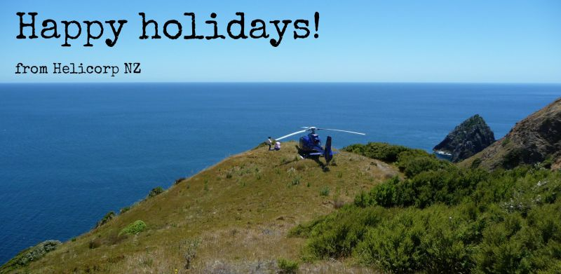 Happy holidays from Helicorp