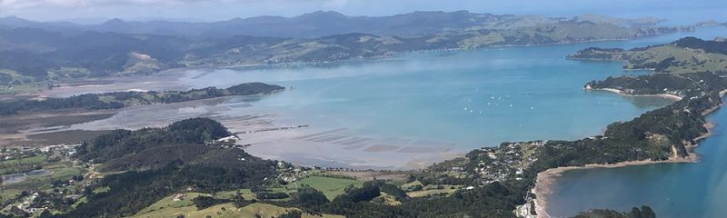 Helicopter flights to the Coromandel